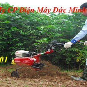 Máy Xới Đất Honda 501