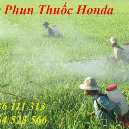 Máy Phun Thuốc Honda