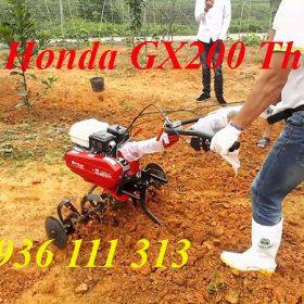 Máy Xới Đất Honda GX200 Thái Lan