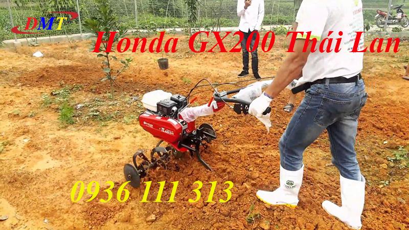 Máy Xới Đất Honda TL601 - Honda GX200 Thái Lan