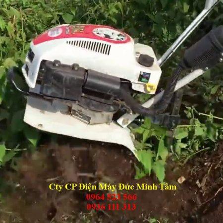 Video Máy Xới Đất Trâu Vàng Làm Cỏ